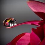 Цветочные водяные