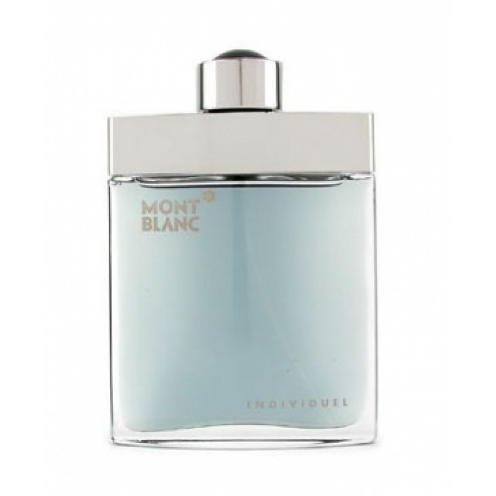 Mont Blanc Individuel Homme